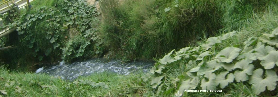 Aguas contaminadas del canal Tibanica. Fotografía Henry Barbosa.