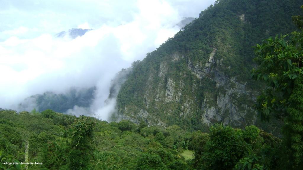 Parque Natural Chicaque, un exuberante tesoro verde convertido en santuario por ecologistas y ambientalistas. Fotografía Henry Barbosa.