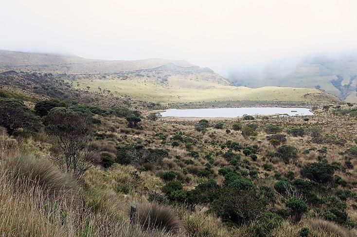 Páramo Altiplano Cundiboyacense