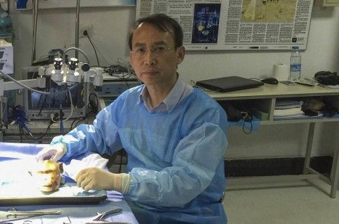 El Doctor Ren Xiaoping en su laboratorio en Harbin.
