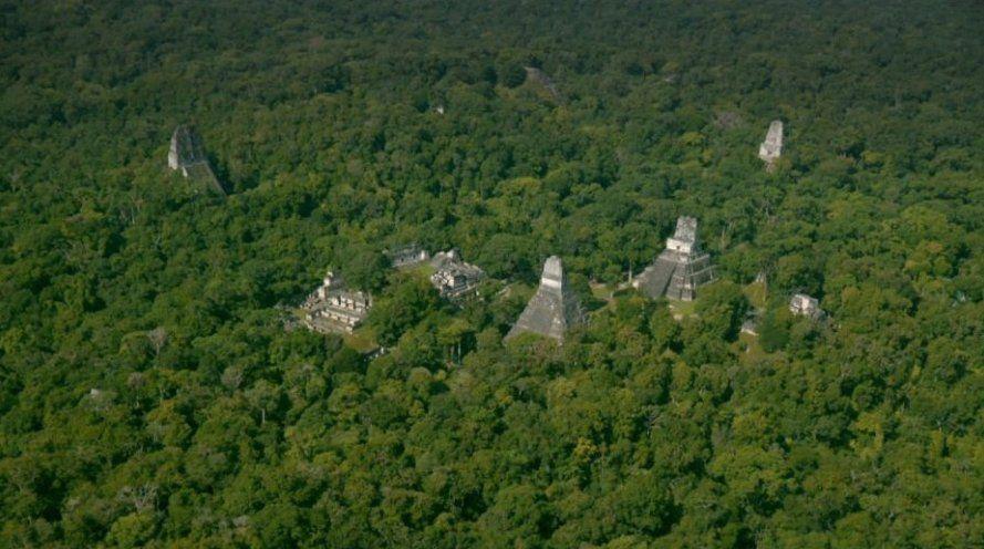 Desde las alturas se pueden observar a simple vista varias estructuras de Tikal, pero cerca de ahí hay otras estructuras ocultas en la selva. Foto: Wild Blue Media/National Geographic