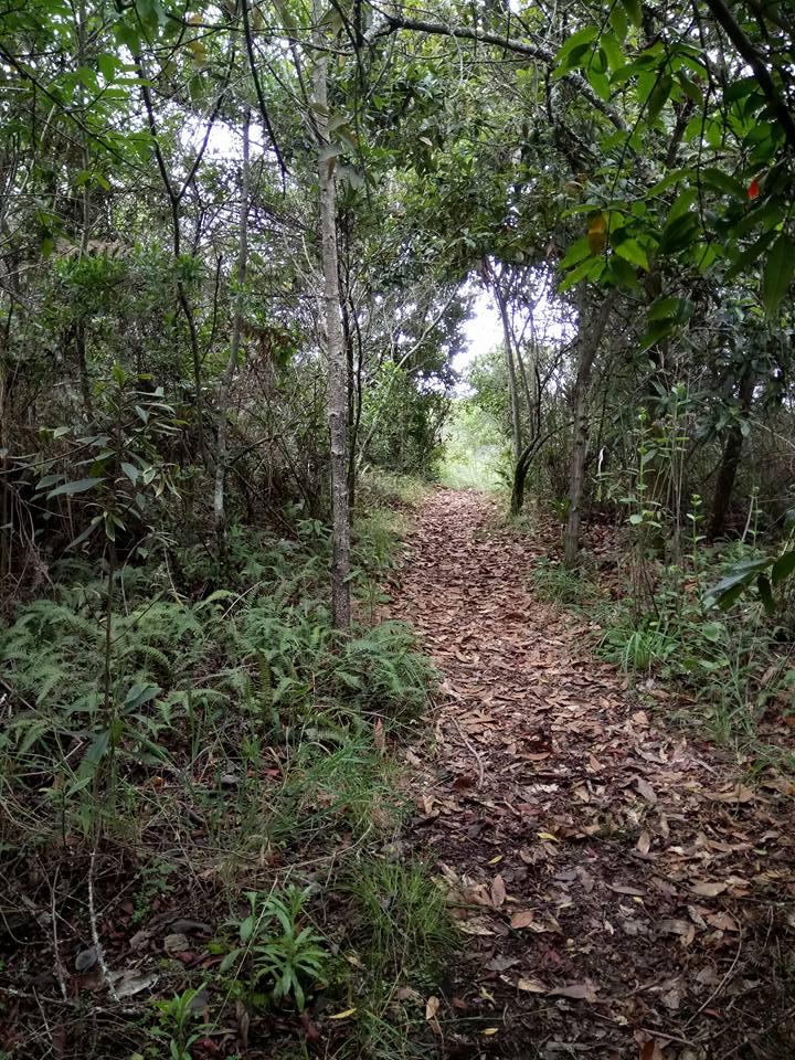Parque Ecológico de La Poma