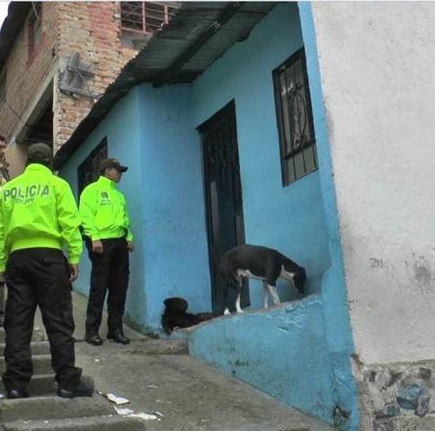 Policía podrá ingresar a una vivienda sin orden judicial cuando un animal esté en peligro