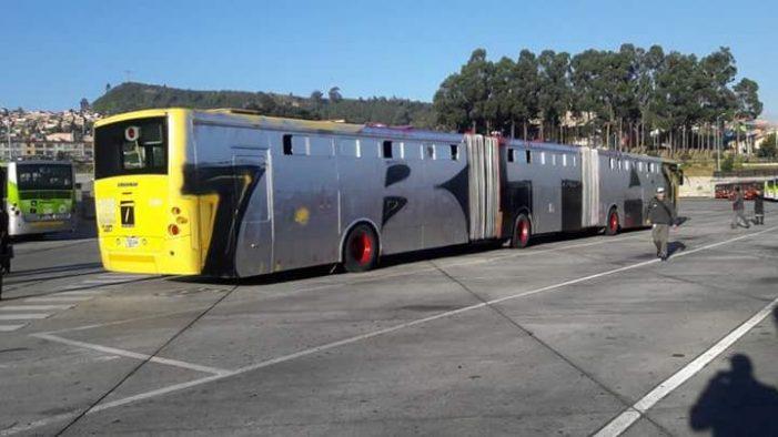 Bus de TransMilenio fue pintado con graffitis