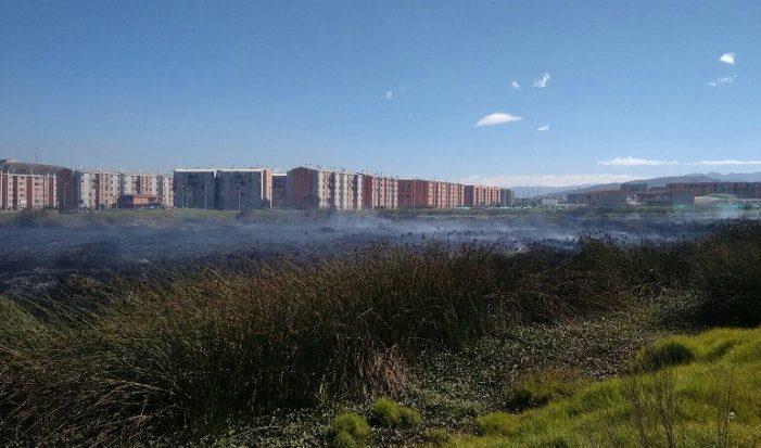 Bomberos controlaron incendio forestal en el Humedal Tierra Blanca de Soacha