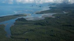 Declaran desistimiento de proyecto que pretendía construir un puerto en Tribugá (Chocó)