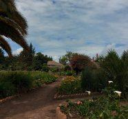 Centro masculino especial La Colonia de Sibaté comprometido con la preservación del medio ambiente