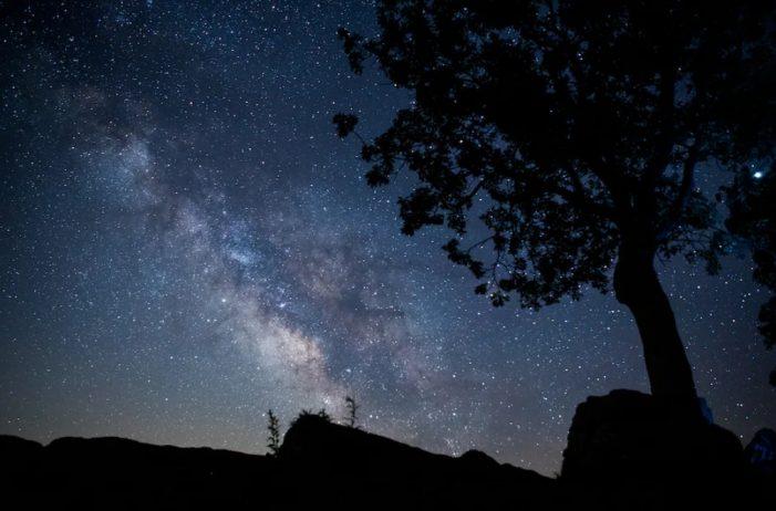 Científico advierte que el esperado contacto con extraterrestres podría poner fin a la vida en la Tierra