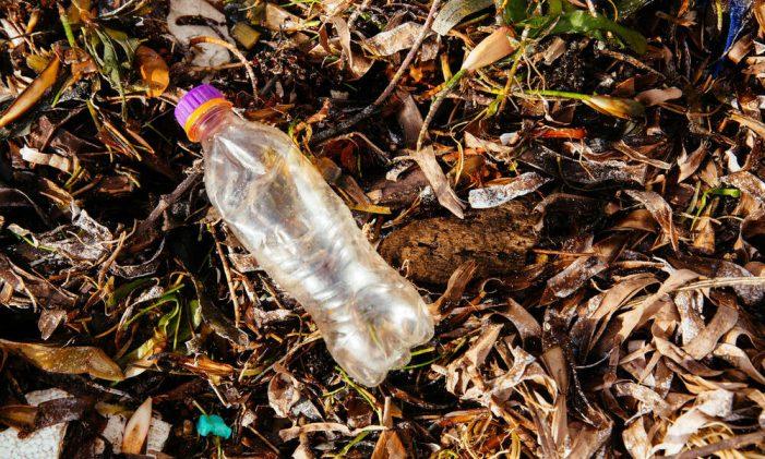 Prohíben uso de plásticos en parques de Cundinamarca